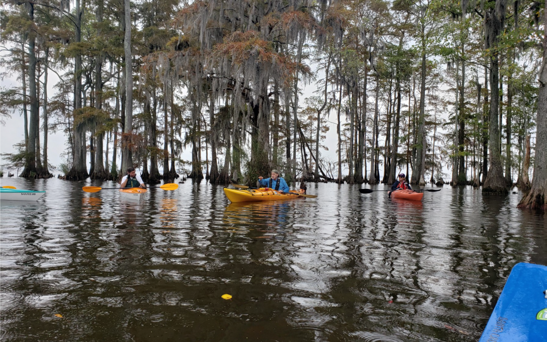 OYC NEWS: Mackeys Creek, OYC's First 2020 Kayak Trip
